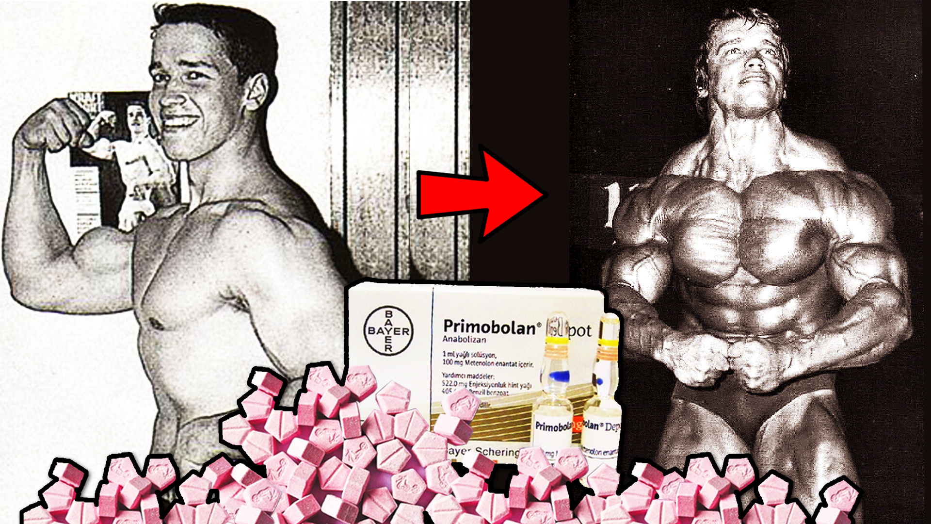 arnold primo ripped