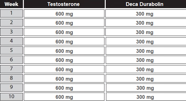 testosterone deca cycle